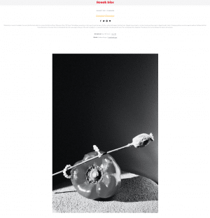 French fries Delusion chamber publication preview. Editorial of vegetable still lifes with jewels by Myriam Moreno.